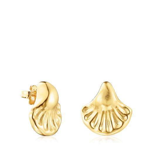 Oceaan shell Earrings set