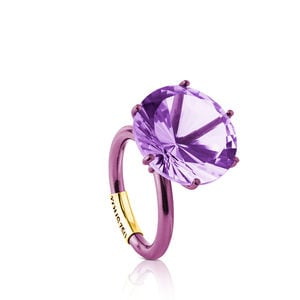 Gold Sisy Ring with Titanium and Amethyst
