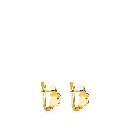 Vermeil Silver Gen Earrings