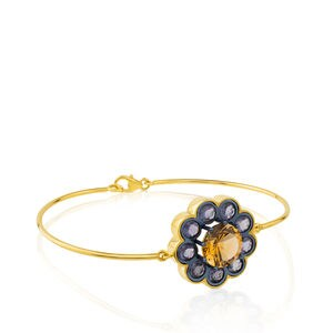 Gold and Titanium View Bracelet with Citrine and Iolite